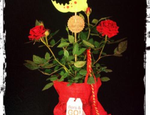 Sant Jordi 2014 – La família creix…