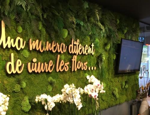 Nuestra floristería se reinventa