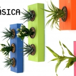 Flowerbox - Clásica