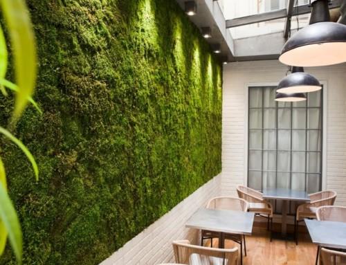 Un jardín vertical,  solución para espacios aburridos
