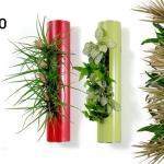 Flowerbox - Tubo