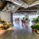 GREEN OFFICE #15