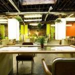 GREEN OFFICE #18