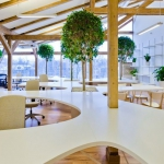 GREEN OFFICE #19