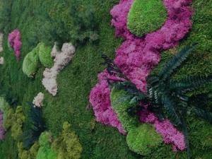 jardin preservado