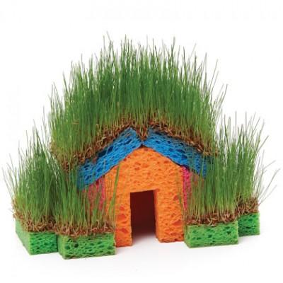 casita hierba