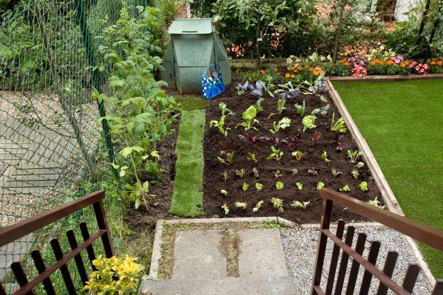 huerto jardin
