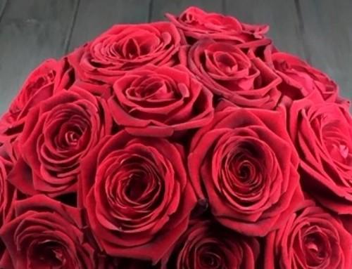 ¡San Valentín a la vuelta de la esquina!