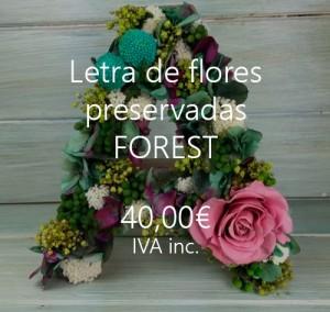 letra flores preservadas forest
