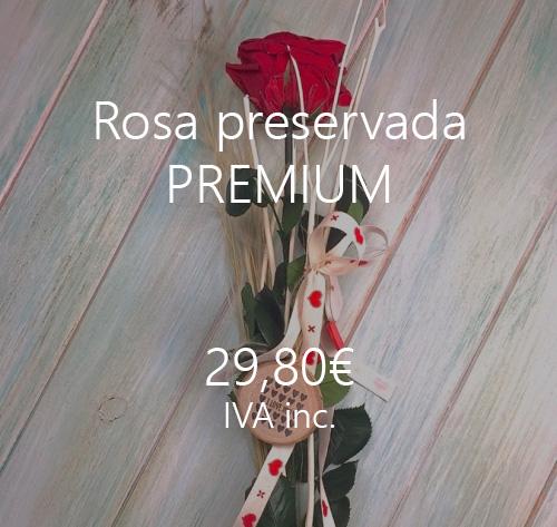 rosas preservadas para siempre