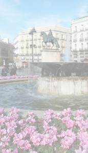 floristería Madrid online