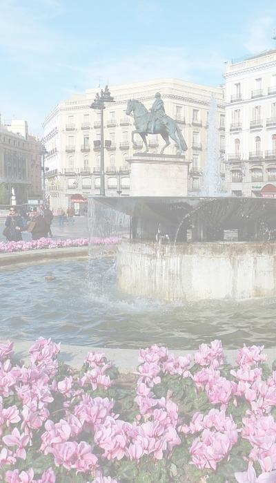floristeria Madrid online