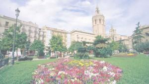 Floristería a domicilio Valencia
