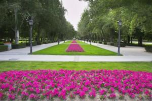 floristeria madrid