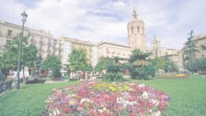 floristería en valencia