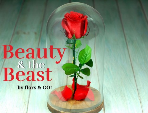 """Beauty and the Beast"", nuestro homenaje en forma de rosa eterna a la Bella y la Bestia"