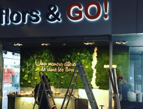 Floristería en Madrid Flors & GO!, mucho más que una floristería