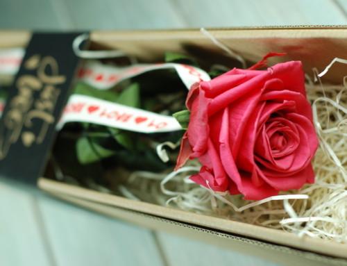 5 productos de flors & GO! para regalar
