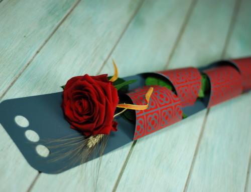 ¿Qué rosa regalar en Sant Jordi? Descubre nuestra selección