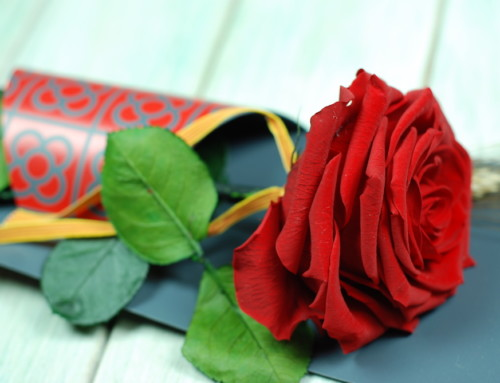 Puntos de venta flors & GO! Sant Jordi 2018