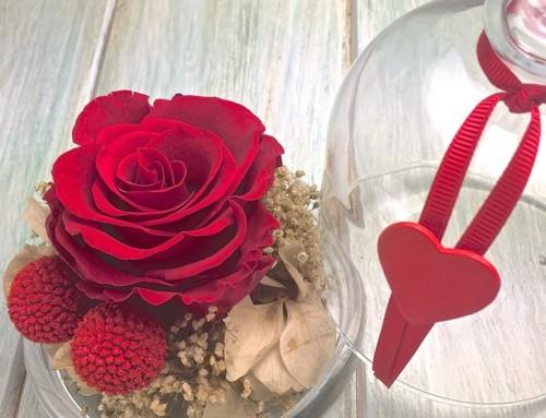 Adelántate al Día de la Madre con nuestras flores preservadas