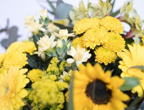 Top 5 de flores para el verano