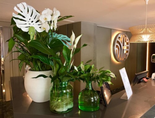 La decoración floral de hoteles, también en agosto