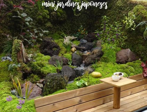 Terrarios extremos: Mini jardines japoneses sobre ruedas