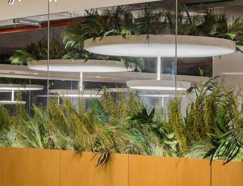 GREEN OFFICE, también es diseño.